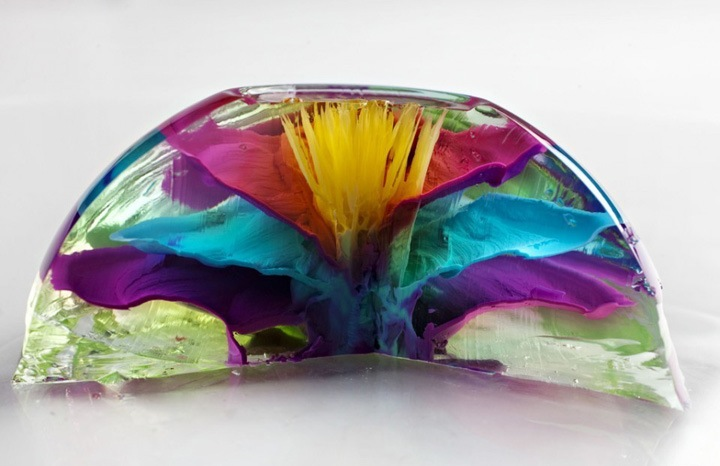 Поперечный разрез цветка демонстрирует ручную работу Гамбоа.