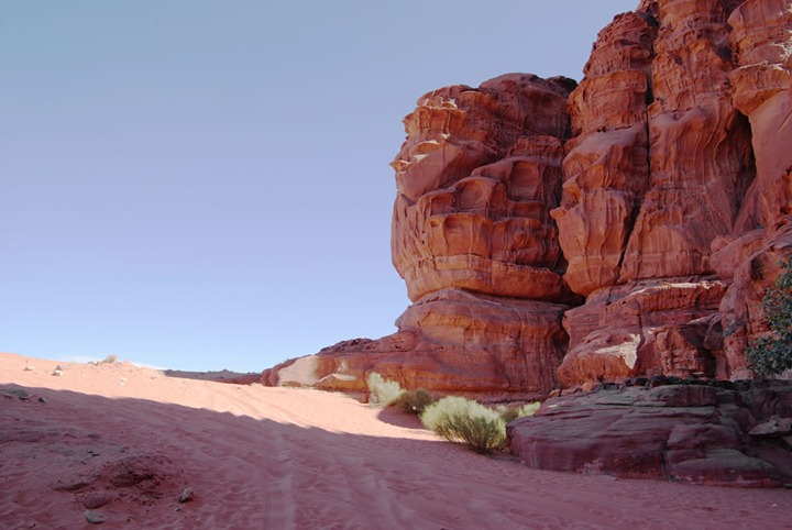 blessed-shade-in-the-desert-Wadi-Rum-Jebel-Khazali