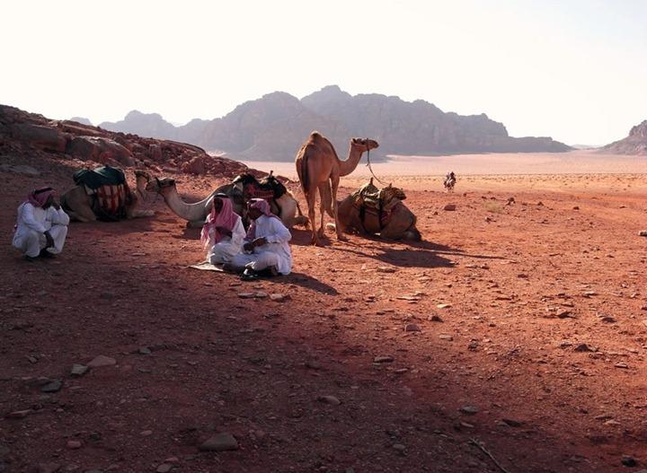 the-gathering-in-wadi-rum-desert
