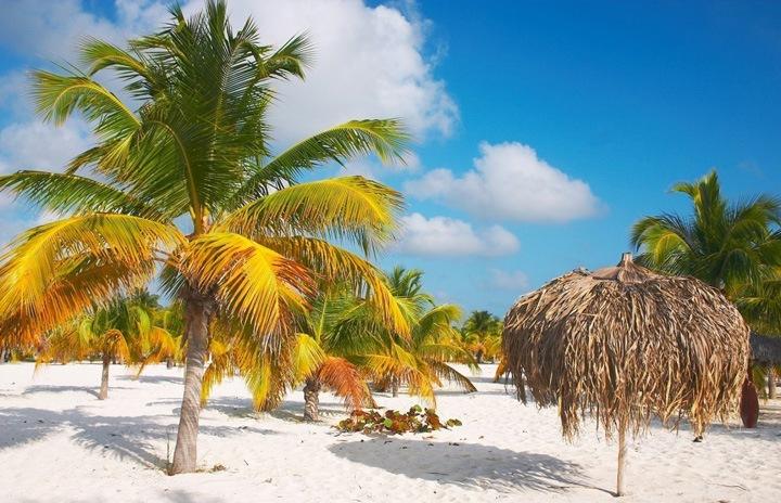 Главный остров, протяженностью 1199 км, занимает большую часть площади страны. Он является самым крупным островом в Карибском бассейне и шестнадцатым в мире по величине. Рельеф главного острова преимущественно равнинный и равнинно-холмистый, не считая гор Сьерра-Маэстра на юго-востоке, самая высокая точка которых - Пико Туркино.