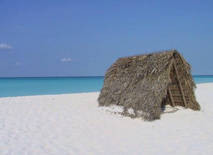 Климат на Кубе тропический, пассатный с северо-восточными ветрами, которые дуют круглый год. Страна подвержена частым ураганам, обусловленными теплыми температурами Карибского моря и расположением Кубы напротив входа в Мексиканский залив. Ураганы наиболее типичны для сентября и октября.