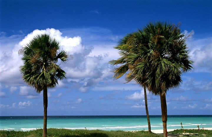 Это просто рай для любителей пляжного отдыха. Пожалуй, в мире найдется немного уголков с таким же количеством пляжей и столь прекрасных, как этот удивительный остров Карибского бассейна.
