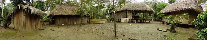 Native-village-of-Chipitiere-in-the-Cultural-Zone-of-Manu-National-Park-Peru