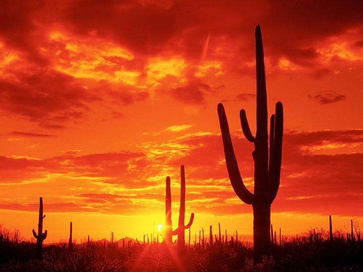 Burning-sunset