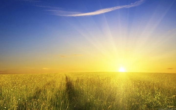 Rising-gold-sun