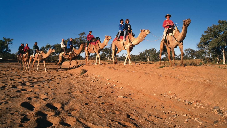 Туристическая Австралия – путешествие на край света