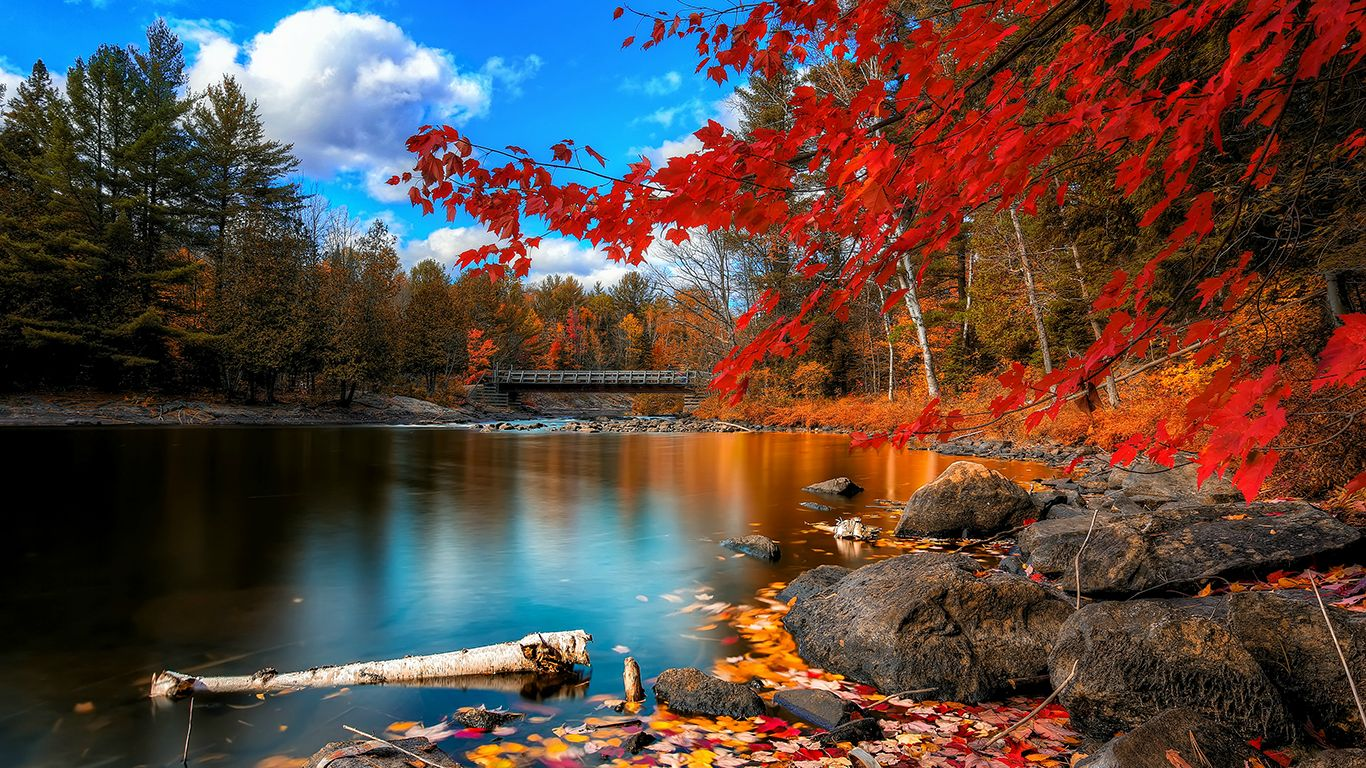 ТОП–10 самых интересных фактов о Канаде. Чем же так удивительна знаменитая страна озер?